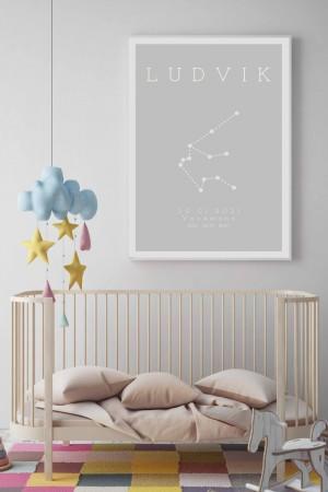 Fødselpostere